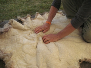 The satisfaction of the final stages of softening the sheep hide.