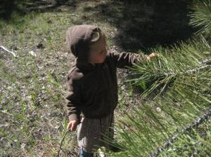 Exploring nature is natural for children.  They help the adults see nature more acutely.