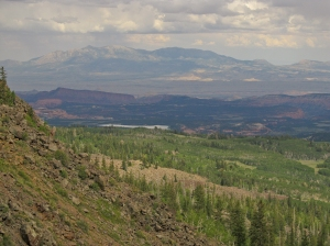 A view of the Henry Mountains - 30 miles away - from the top of the escarpment on Boulder Mountain.