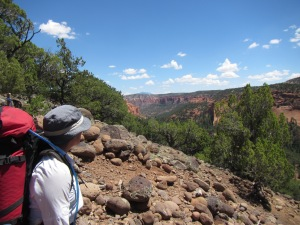The canyon country contains numerous nooks and crannies that hold an array of treasures to discover.