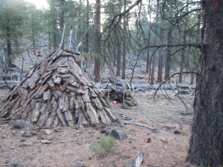 A bark and pine needle shelter, the foundation of the backwoods camp.