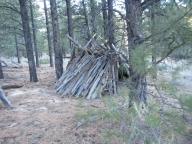 Natural Bivouac Shelter
