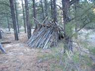 Natural Bivouac Shelter