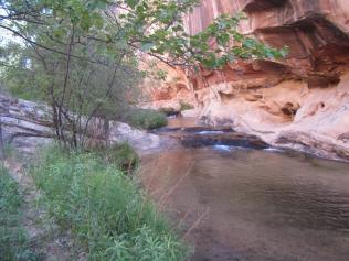 Riparian Canyon