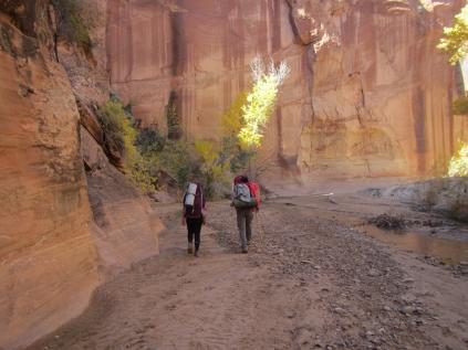 Riparian Canyon Backpacking